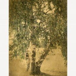 Photographie sur bois, photographie alternative, Natalène Boussac