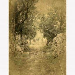 photographie sur bois, photographie alternative Natalène Boussac